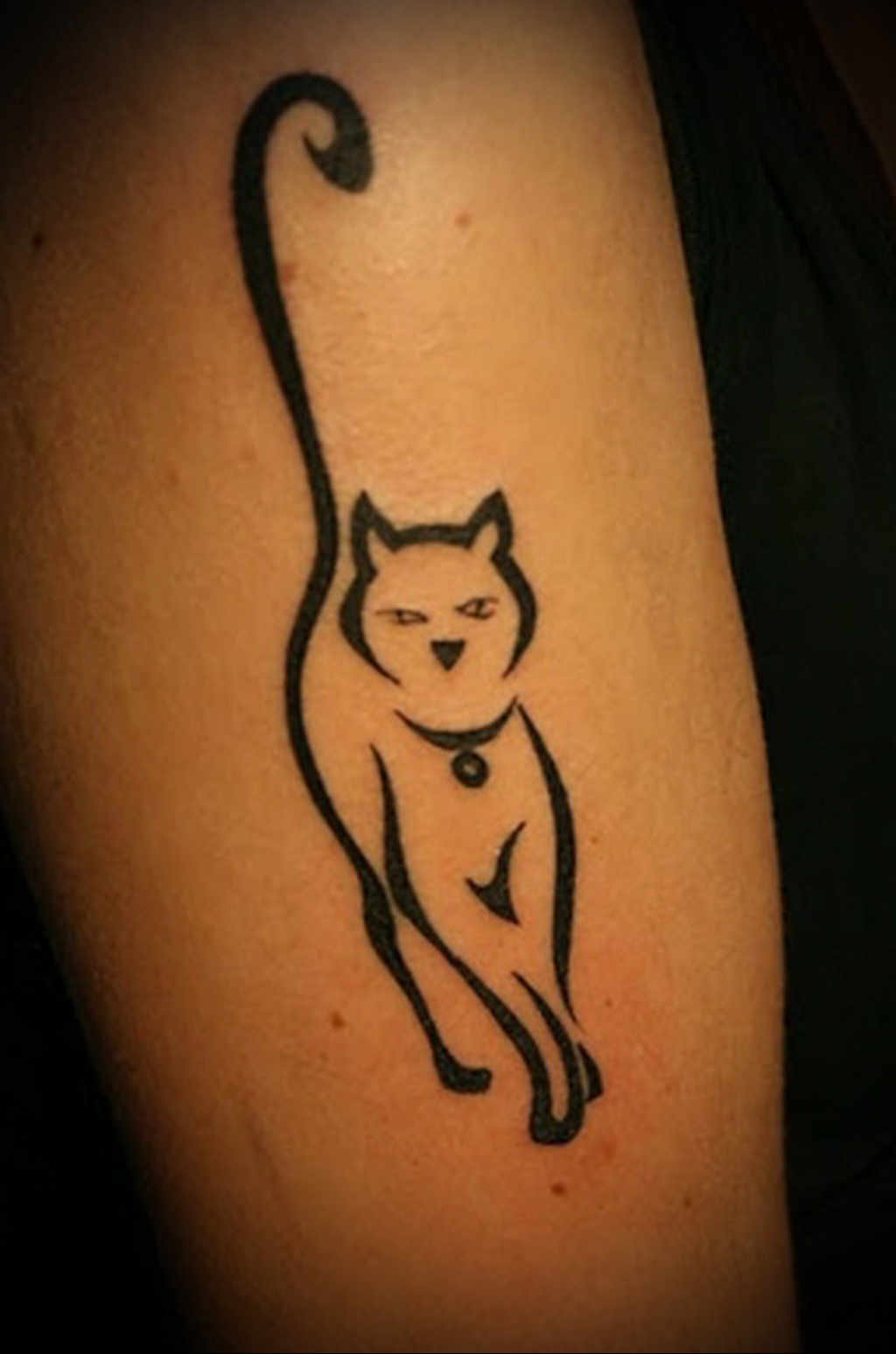 Значение татуировки кошка 10