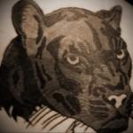 Значение татуировки пантера 8