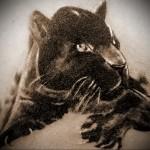 Значение татуировки пантера 9