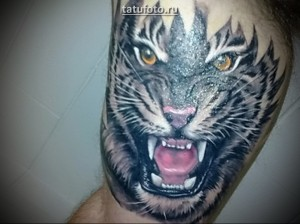 Значение тату тигр - Татуировки и их значение