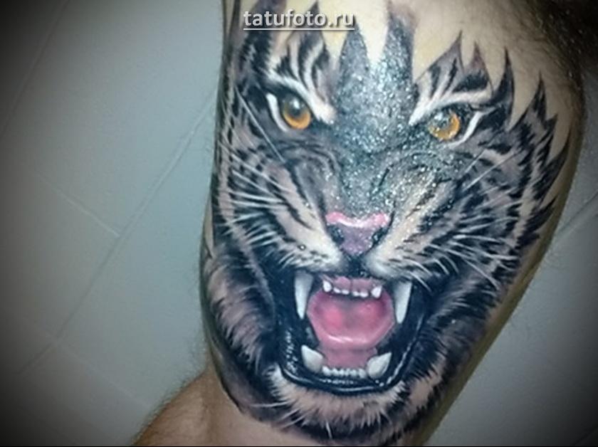тату тигр на плече мужские значение