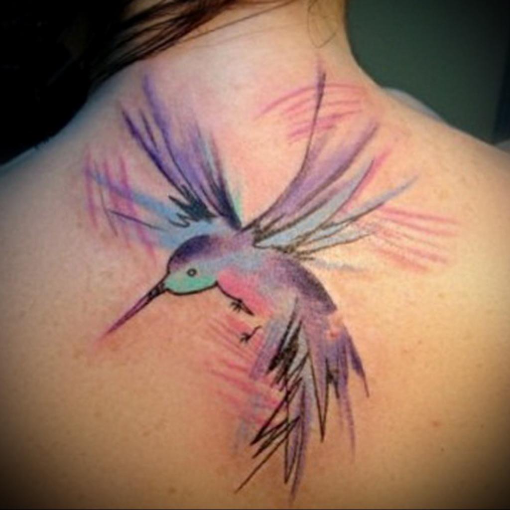 Татуировка колибри и её значение