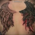Два крыла на спине девушке в тату