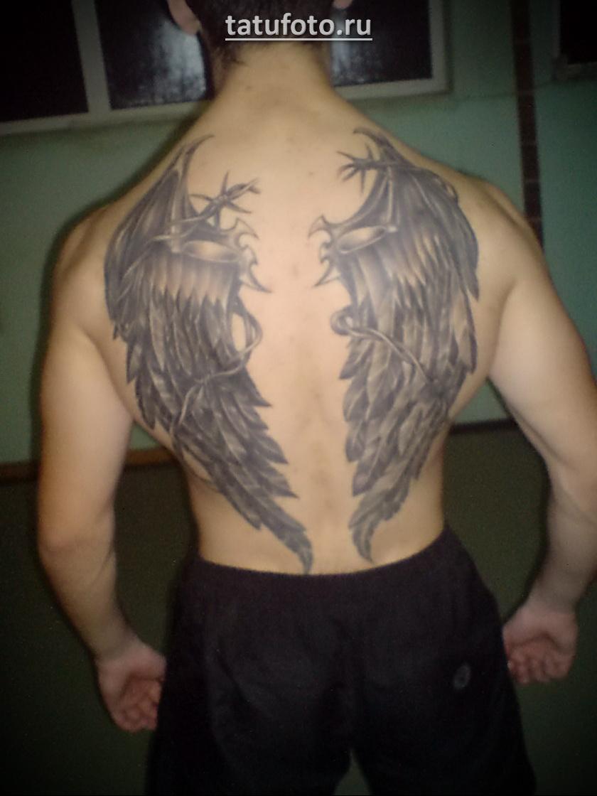Мужская тату с крыльями на спину