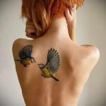 две птички целуются тату на спине женская