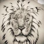 красивая морда льва - тату мужская на спине фото