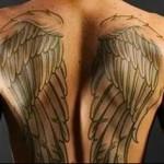крылья на спине как вариант - татуировка на спине мужская фото