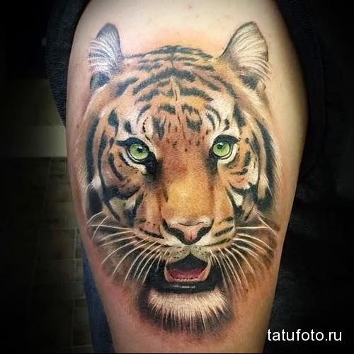 морда тигра татуировка на ноге мужская
