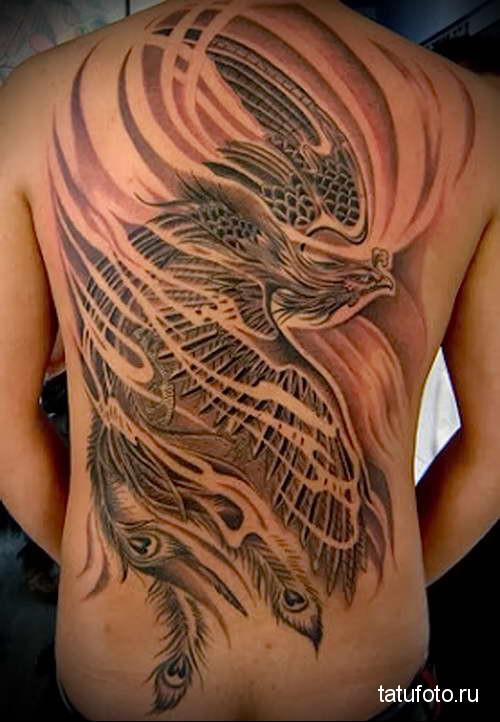 огненная птица феникс татуировка на спине мужская фото