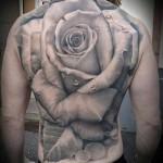 огромный бутон розы татуировка на спине мужская фото
