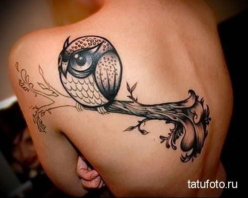 смешная сова на ветке тату на спине женская