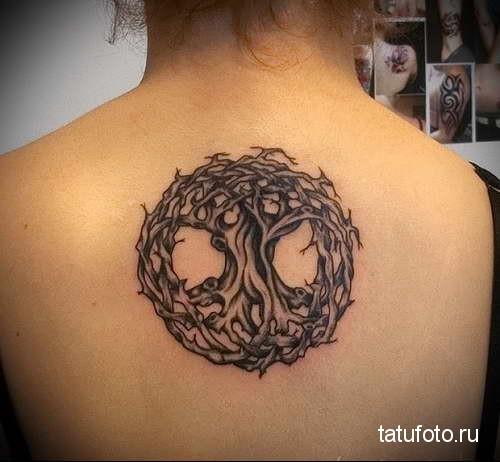 сплетение сухого дерева жизни тату на спине женская