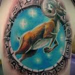 татуировка козерог - мужская татуировка на плече