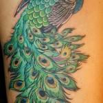 татуировка яркий павлин с пышным хвостом на ногу для девушки