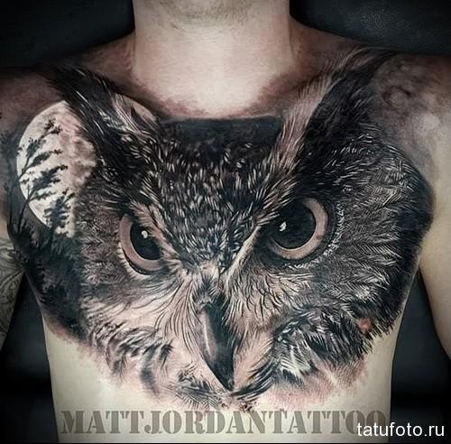 тату глаза совы - мужская татуировка на грудь