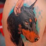 тату доберман - мужская татуировка на плече