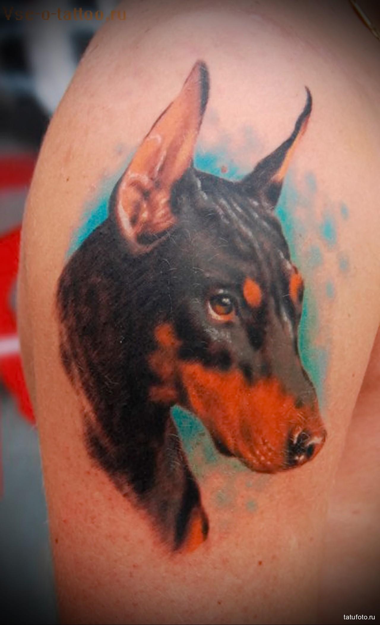 Татуировка доберман для девушки