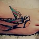 тату ласточка с цветными крыльями