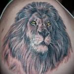 тату лев с горящими глазами - мужская татуировка на плече