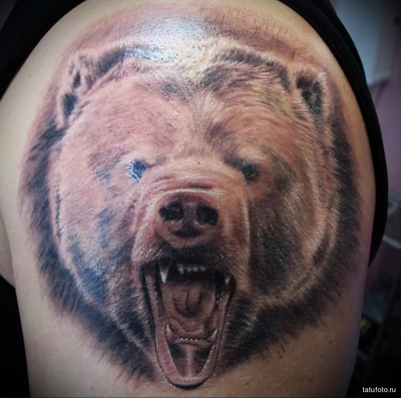тату медведь показал оскал - мужская татуировка на плече