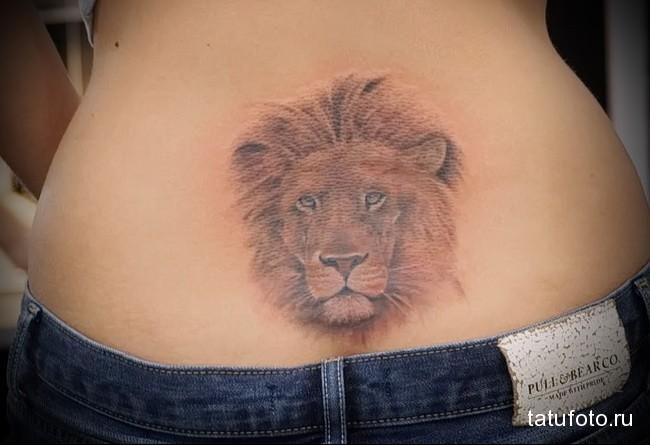 тату морда льва