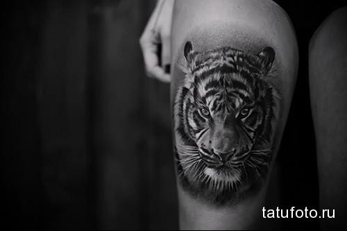 тату морда тигра на ногу для девушки