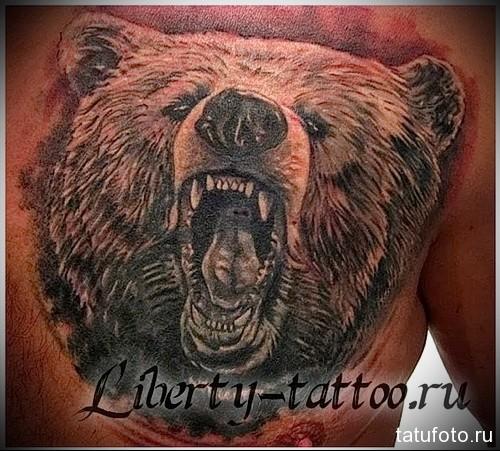 тату оскал медведя - мужская татуировка на грудь