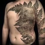 тату паппоротник - мужская татуировка на грудь