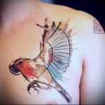 тату птичка взмахивает крыльями - мужская татуировка на грудь