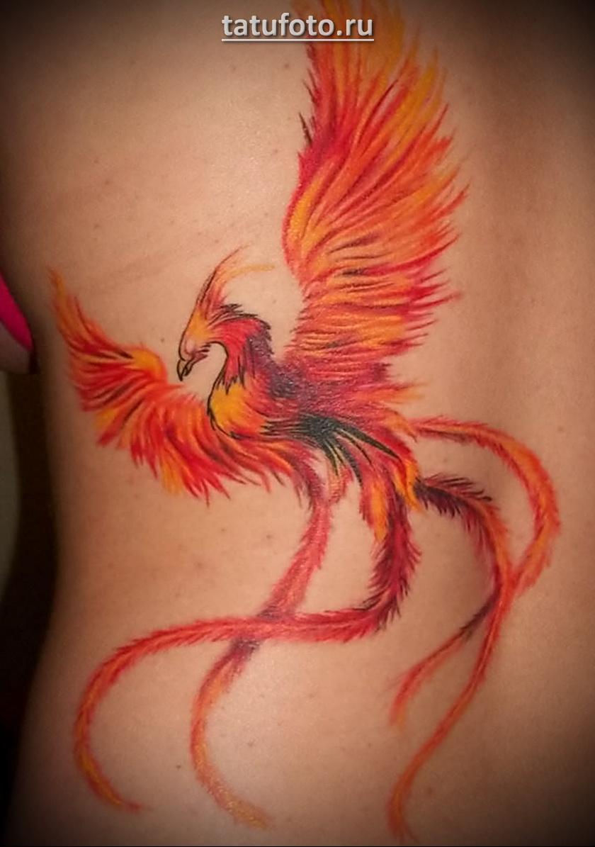 Яркий-огненный феникс в тату