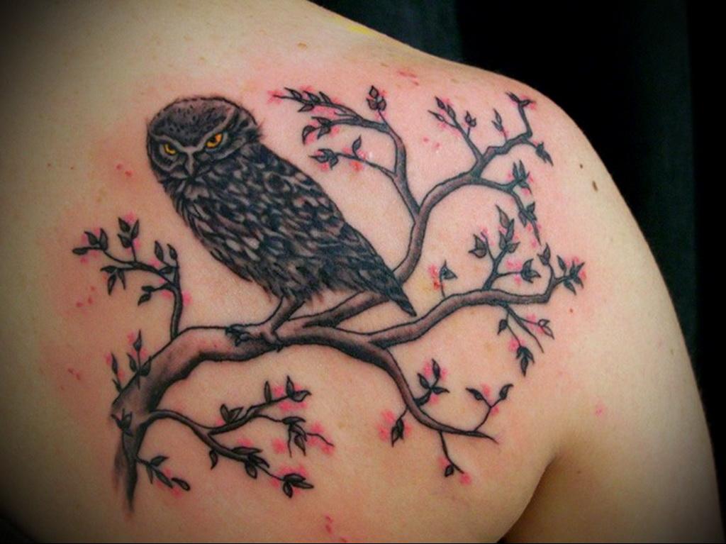 Значение татуировки сова 2
