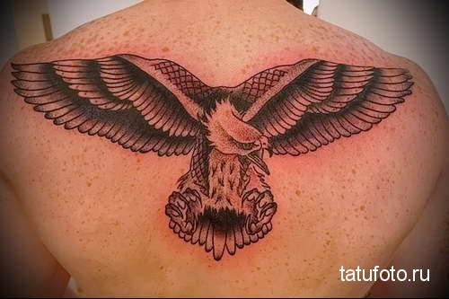 орел расправив крылья бросается на цель - тату мужская на спине фото
