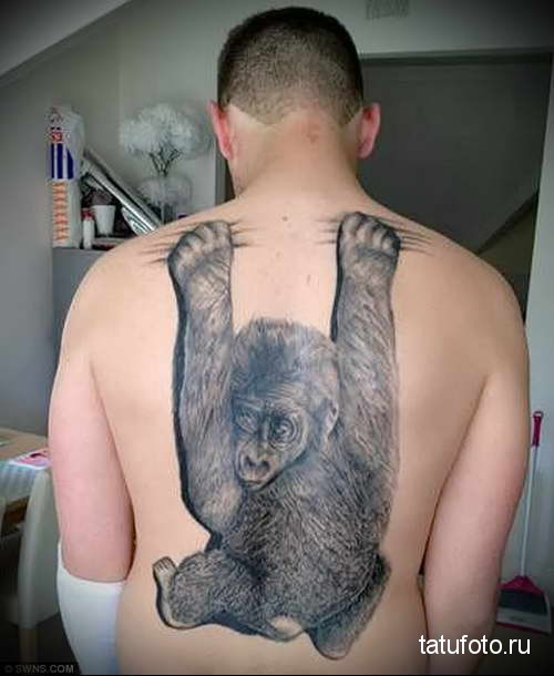 смешная обезьянка - тату мужская на спине фото