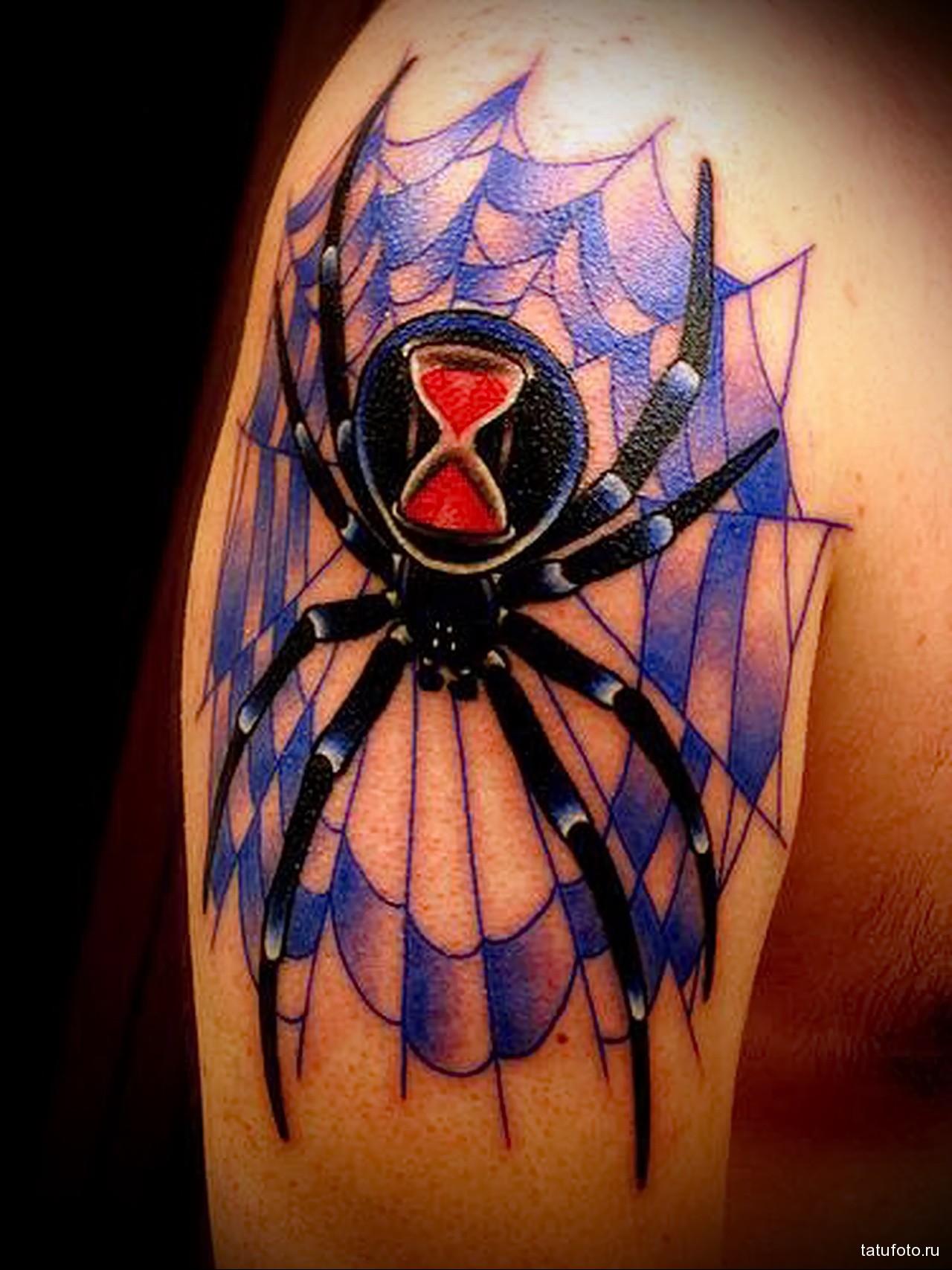 татуировка паук с песочными часами на попе - мужская татуировка на плече