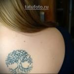 Дерево жизни тату - женский вариант на спину