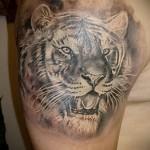 воровская татуировка Тигр