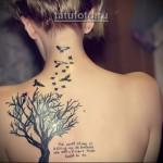 Дерево жизни тату и текст - татуировка на спину