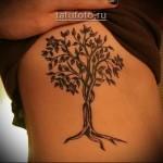 Дерево жизни тату на боку у девшки