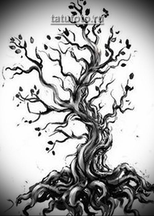 Дерево жизни тату эскиз на белом фоне