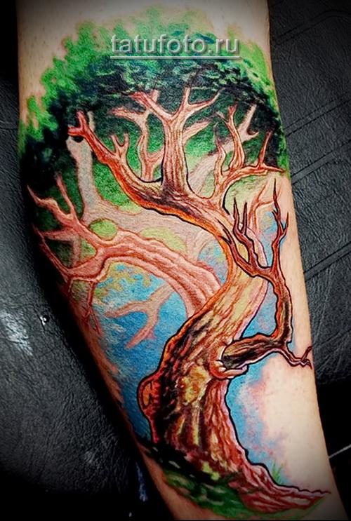Дерево жизни тату - яркая и цветная работа