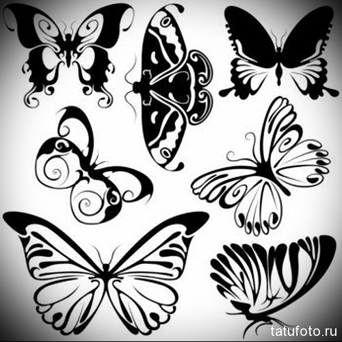 Abstract Butterflies 2 - black illustration symbols