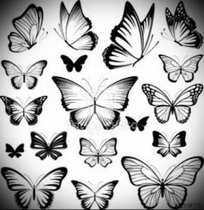 бабочки тату эскизы