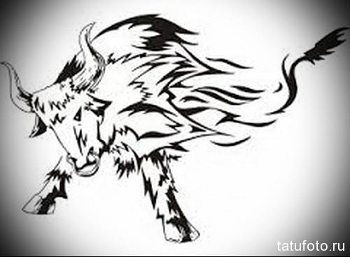бык бьет рогами - Тату быка эскиз