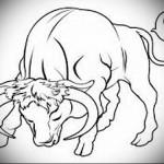 бык опустивший голову - Тату быка эскиз