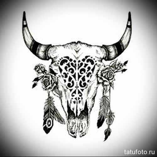 голова быка, розы и перья - Тату быка эскиз