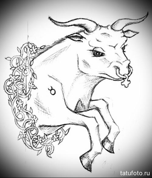 необычный эскиз для знака телец - Тату быка эскиз