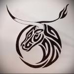 символ-быка-для-тату-со-знаком-зодиака-телец-Тату-быка-эскиз