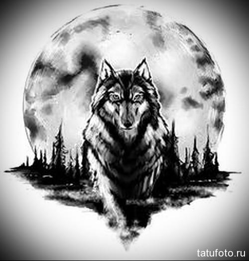 волк на фоне луны фото