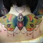 тату бабочки на спине фото