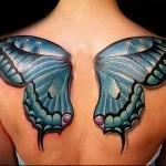 тату бабочки на спине фото 3